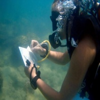 PADI specialty courses 2 days
