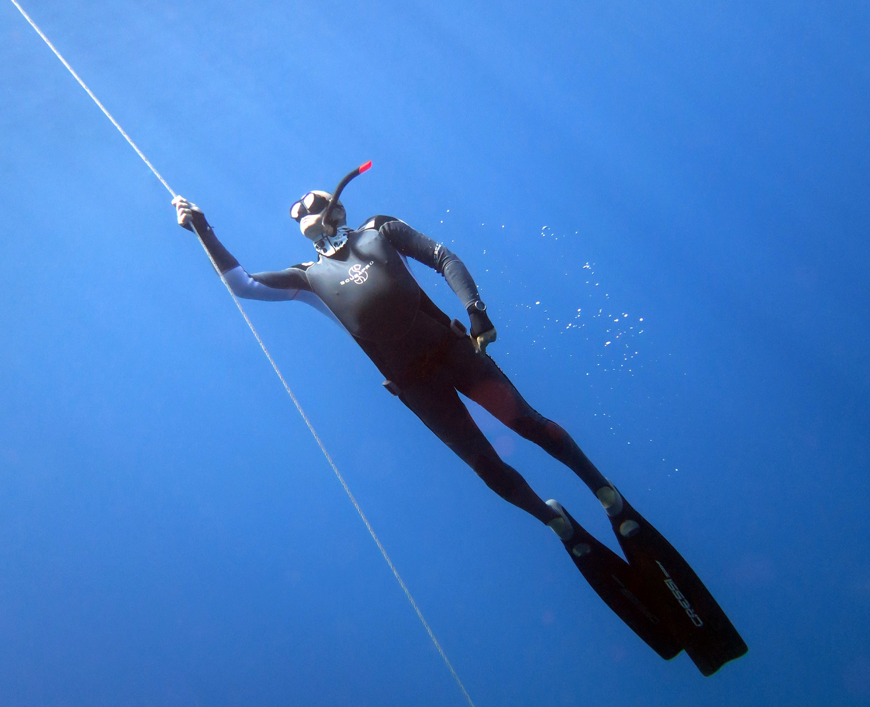 freediving-training-on-line